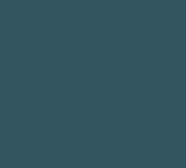 Icon 2 – Blue