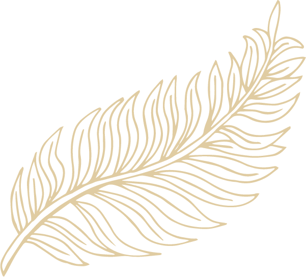 Icon 2 – Cream
